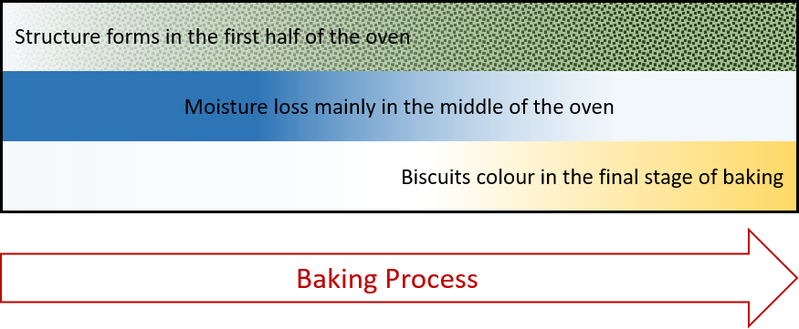 Baking process of biscuits