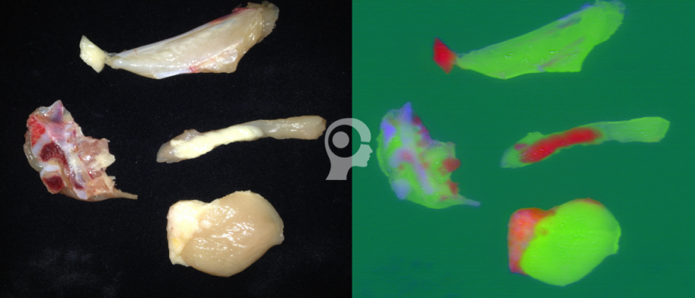 Hyperspectral Imaging for chicken meat