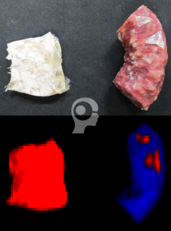 chemical color imaging, cci, and hyperspectral imaging to detect sausage casing, Perception Park, Perception System