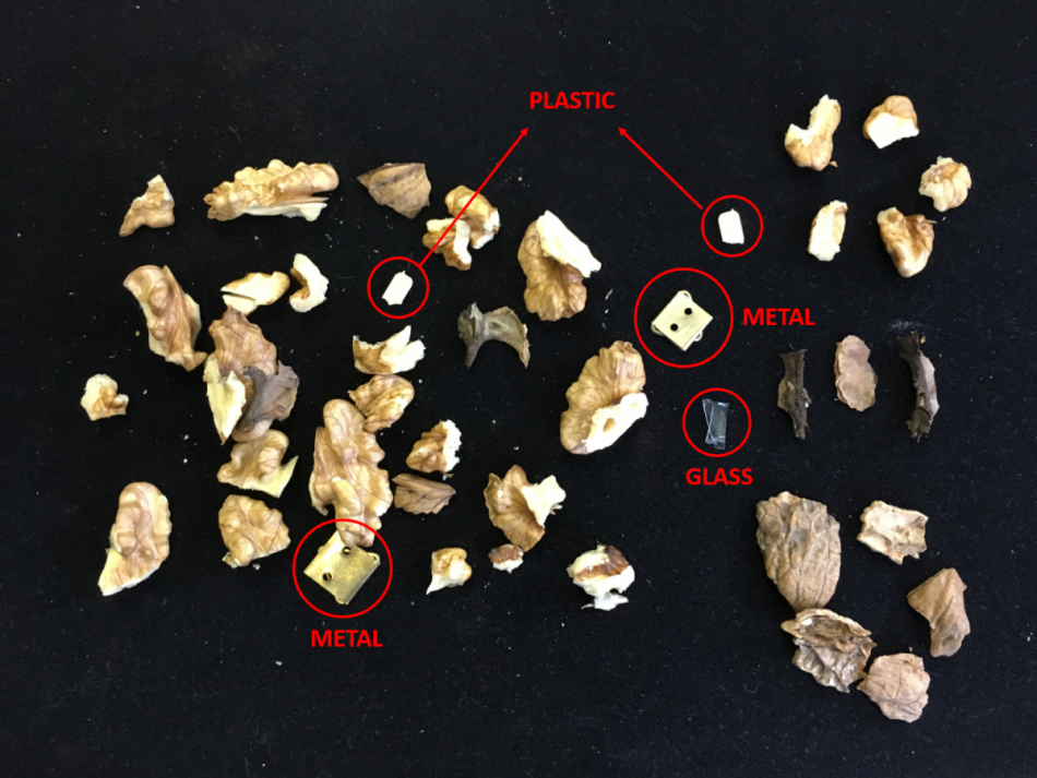 Walnut sorting - detection of known and unknown impurites