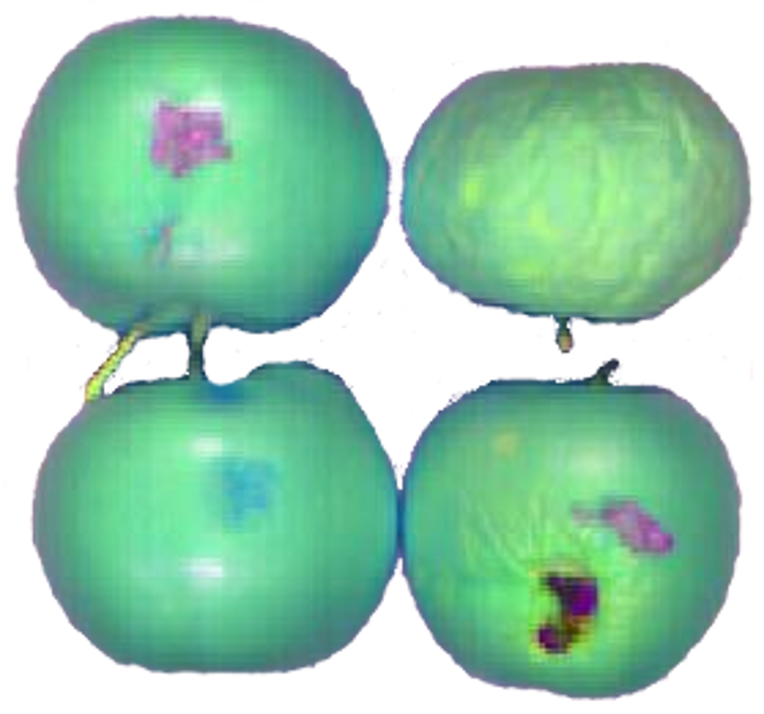 Apple Sorting by Chemical Color Imaging